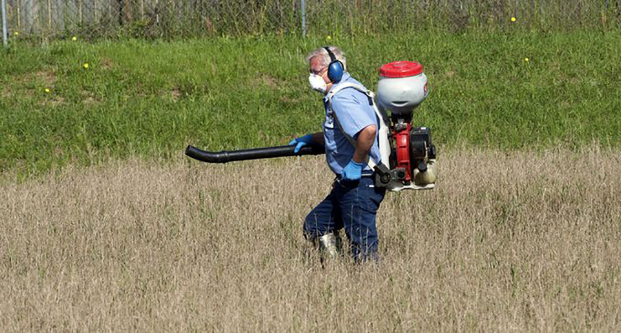Mosquito Control Technician Spraying
